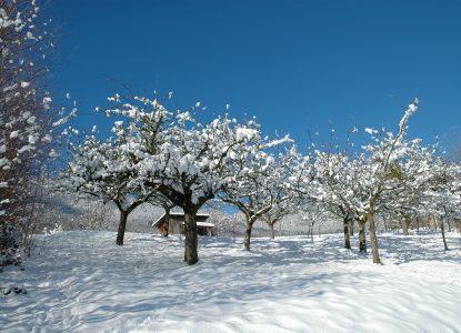 Plateau des Hurtières sous la neige