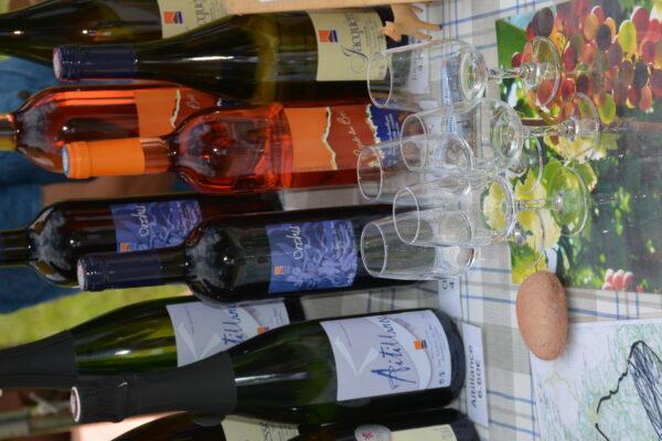 Vin du Sartos
