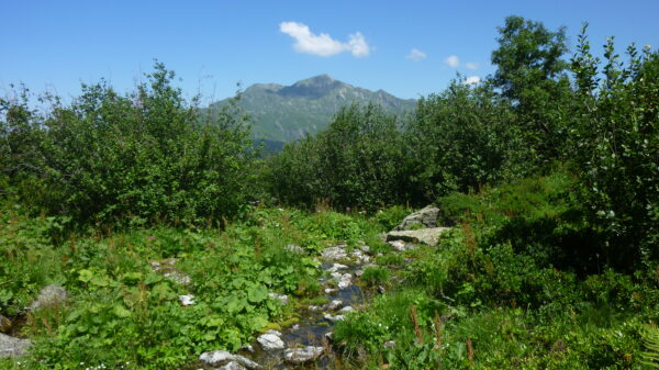 Sentier des alpages Montsapey