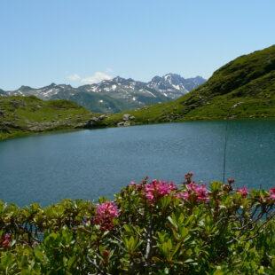 Le Lac Noir Montsapey