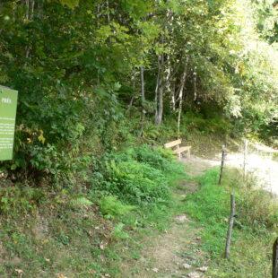 Sentier Nature et Souvenirs Montsapey